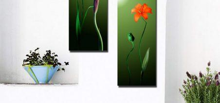Tranh ghép bộ 2 bức nghệ thuật DH1951A kích thước 80x60cm)-0